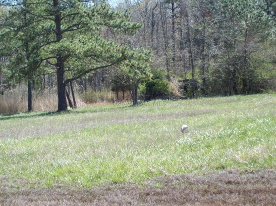 Unimprvd Lots/Land - Westover, MD (photo 3)