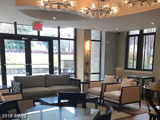 Mid-Rise 5-8 Floors, International - WASHINGTON, DC (photo 3)