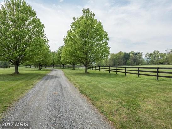 Colonial, Detached - LOVETTSVILLE, VA (photo 3)