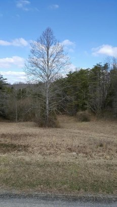 Lot, Lots/Land/Farm - Ferrum, VA (photo 2)