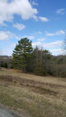 Lot, Lots/Land/Farm - Ferrum, VA (photo 4)