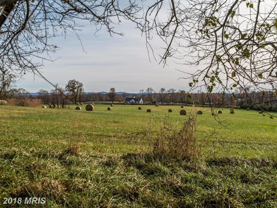 Farm House, Detached - BLUEMONT, VA (photo 5)