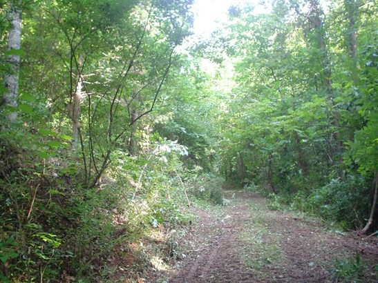 Land (Acreage), Lots/Land/Farm - Buchanan, VA (photo 2)