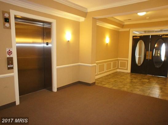Garden 1-4 Floors, Contemporary - MANASSAS PARK, VA (photo 2)