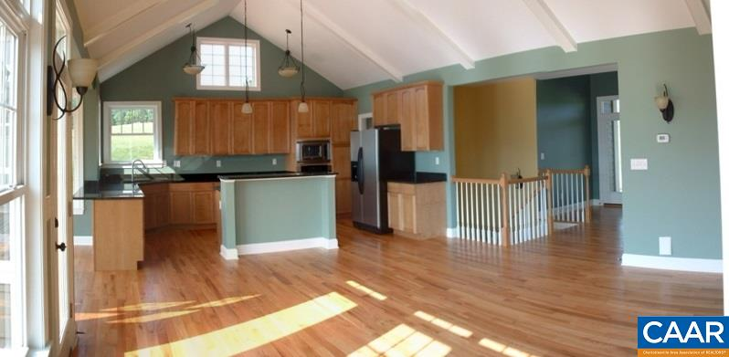 Contemporary, Proposed Attached - GORDONSVILLE, VA (photo 5)