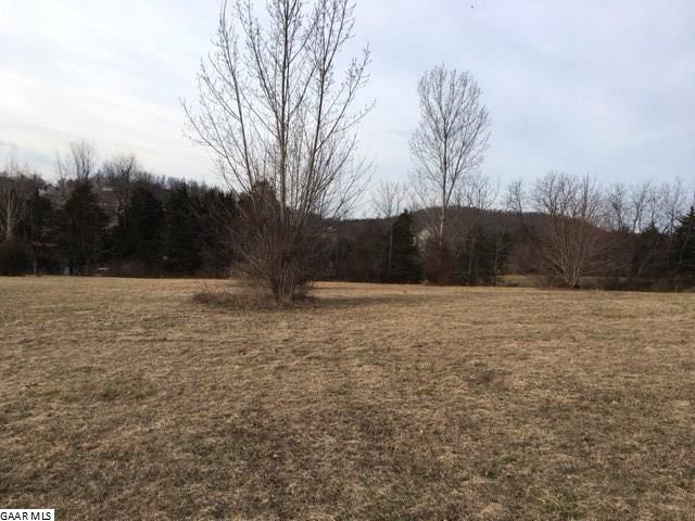 Land - RAPHINE, VA (photo 4)