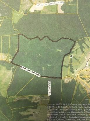 Lots/Land/Farm - Residential, Dairy, Subdevelopment, Mobile Home/Double, Farmland, Horse Farm, Ti (photo 1)