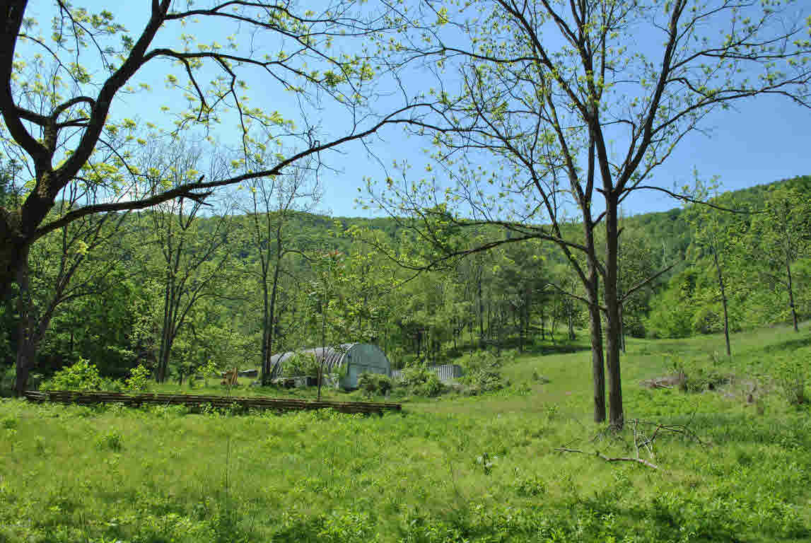 Land - Shawsville, VA (photo 1)