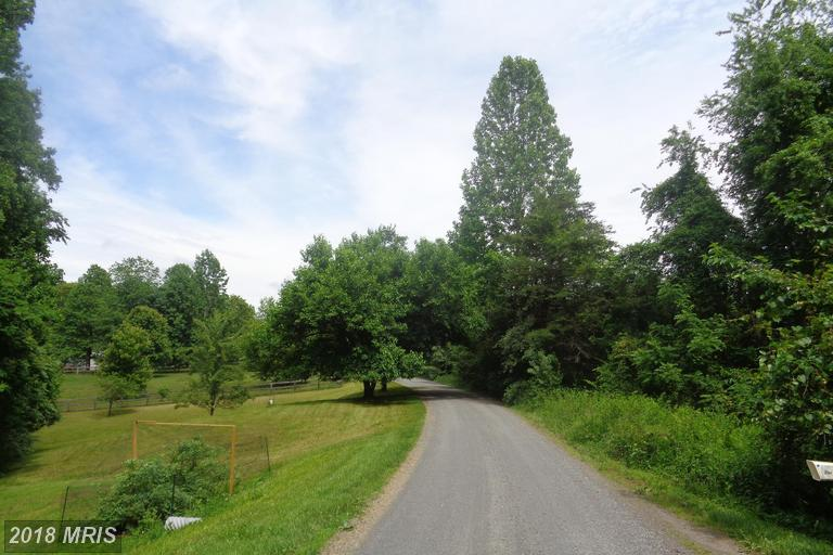 Lot-Land - BOSTON, VA (photo 3)