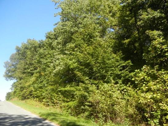 Lots/Land/Farm, Residential, Single Family - Halifax, VA (photo 1)
