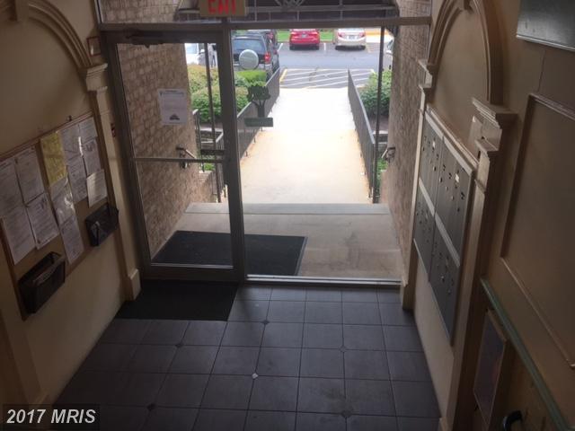 Garden 1-4 Floors, Traditional - GREENBELT, MD (photo 4)
