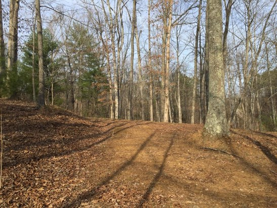 Land (Acreage), Lots/Land/Farm - Goodview, VA (photo 4)