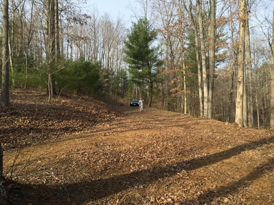 Land (Acreage), Lots/Land/Farm - Goodview, VA (photo 5)