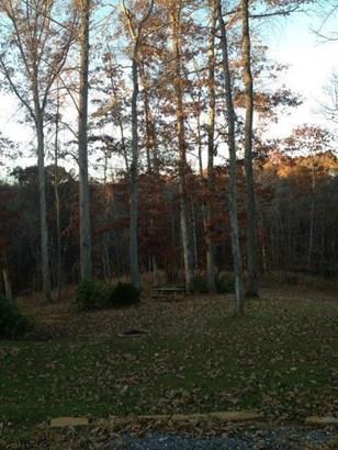 Land (Acreage), Lots/Land/Farm - Floyd, VA (photo 1)