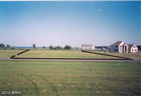 Lot-Land - CAMBRIDGE, MD (photo 3)