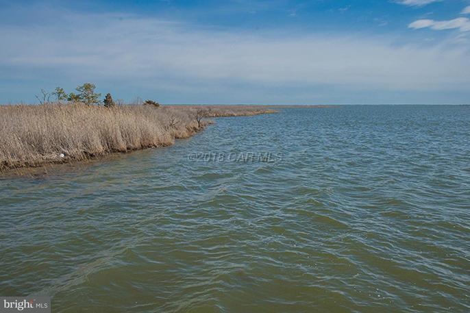 Residential - DEAL ISLAND, MD (photo 4)