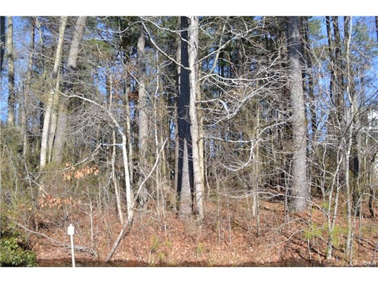 Lots and Land - Millville, DE (photo 1)