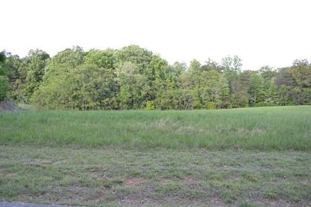 Lot, Lots/Land/Farm - Glade Hill, VA (photo 4)