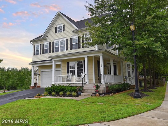 Colonial, Detached - ASHBURN, VA