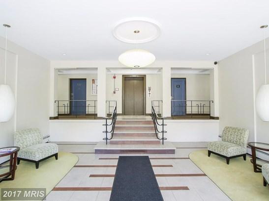 Garden 1-4 Floors, Contemporary - TAKOMA PARK, MD (photo 3)