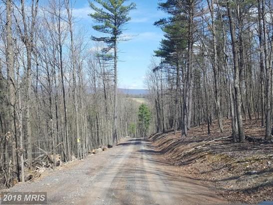 Lot-Land - NEEDMORE, PA (photo 3)