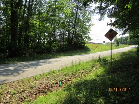 Lots/Land/Farm, Commercfial/Industrial - Chase City, VA (photo 5)