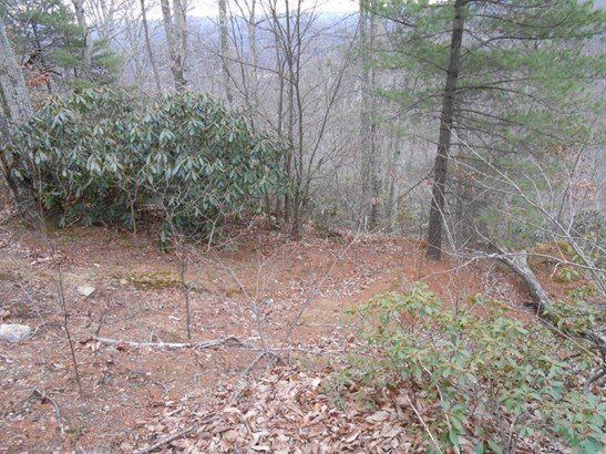 Land (Acreage), Lots/Land/Farm - Callaway, VA (photo 2)