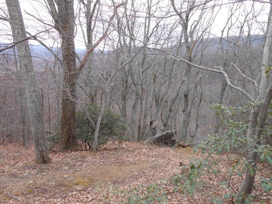 Land (Acreage), Lots/Land/Farm - Callaway, VA (photo 3)