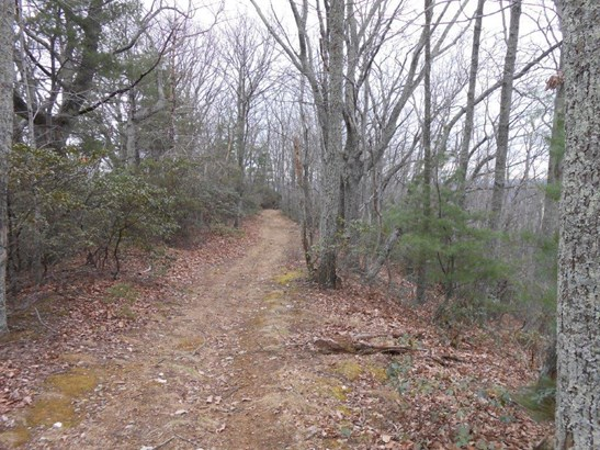 Land (Acreage), Lots/Land/Farm - Callaway, VA (photo 4)