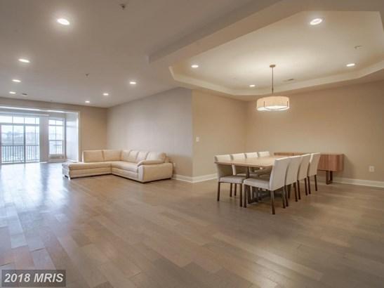 Garden 1-4 Floors, Contemporary - BALTIMORE, MD (photo 3)