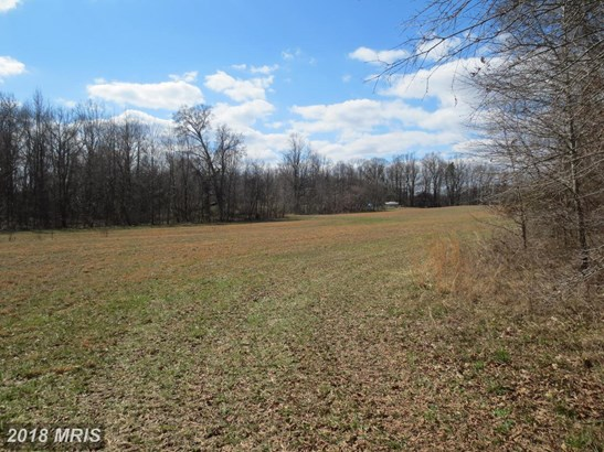 Lot-Land - UPPER MARLBORO, MD (photo 4)