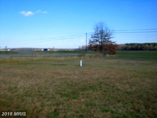 Bungalow, Detached - INGLESIDE, MD (photo 5)
