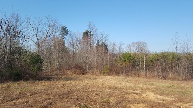 Land (Acreage), Lots/Land/Farm - Ferrum, VA (photo 4)