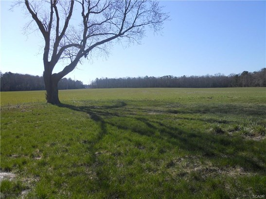 Lots and Land - Harbeson, DE (photo 1)