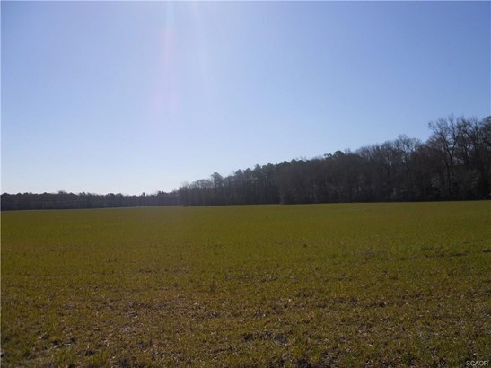 Lots and Land - Harbeson, DE (photo 5)