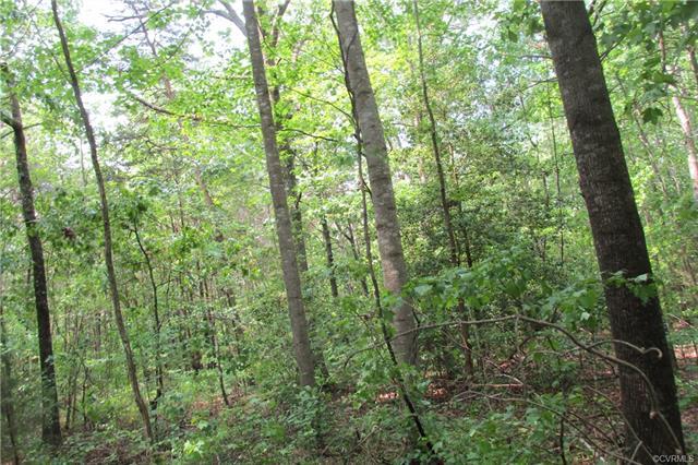 Lots/Land - Bowling Green, VA (photo 2)