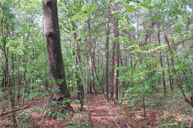 Lots/Land - Bowling Green, VA (photo 4)