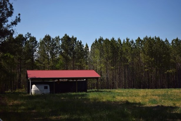 Land/Lots - Alberta, VA (photo 4)