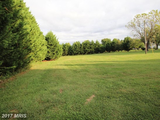 Lot-Land - EARLEVILLE, MD (photo 5)