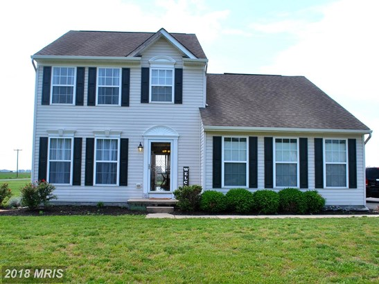 Traditional, Detached - HURLOCK, MD (photo 1)