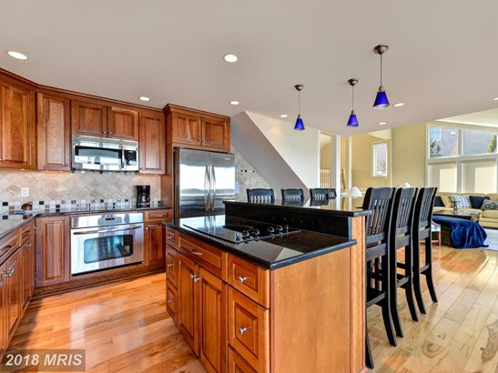 Contemporary, Detached - NORTH EAST, MD (photo 2)