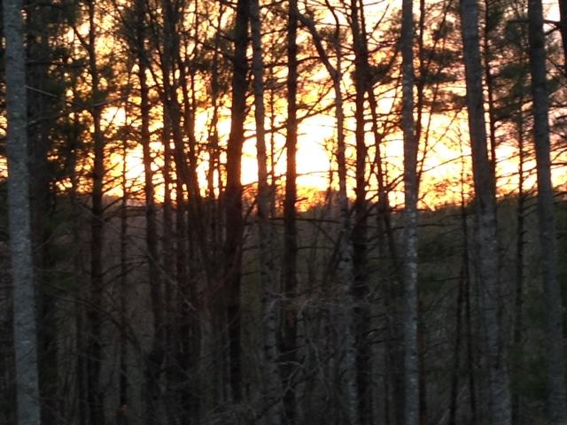 Land (Acreage), Lots/Land/Farm - Goodview, VA (photo 1)