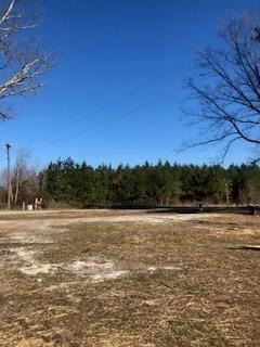 Land/Lots - Lawrenceville, VA (photo 3)