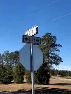 Land/Lots - Lawrenceville, VA (photo 5)