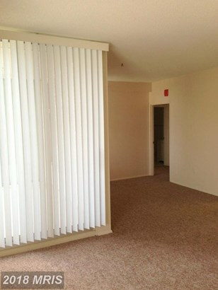 Penthouse, Contemporary - TOWSON, MD (photo 4)