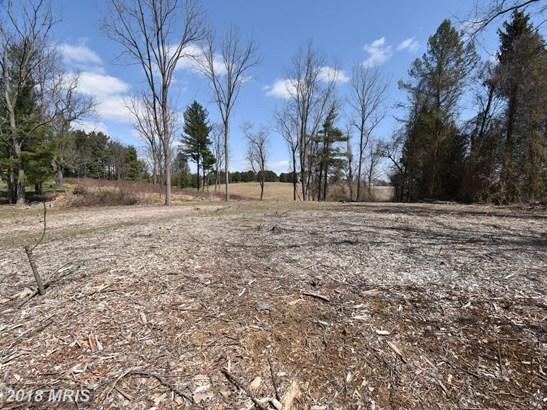 Lot-Land - PARKTON, MD (photo 1)
