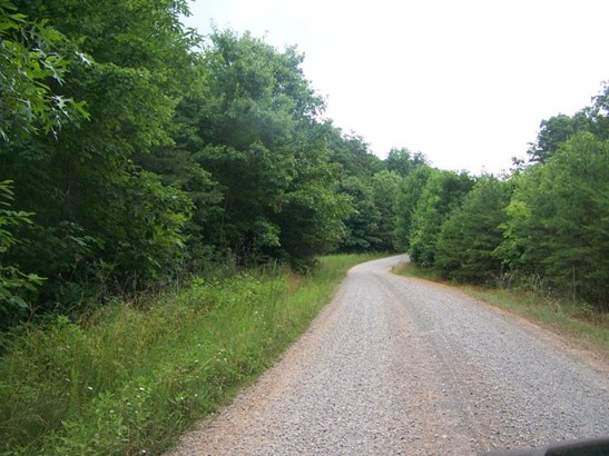 Lot, Lots/Land/Farm - Pittsville, VA (photo 2)