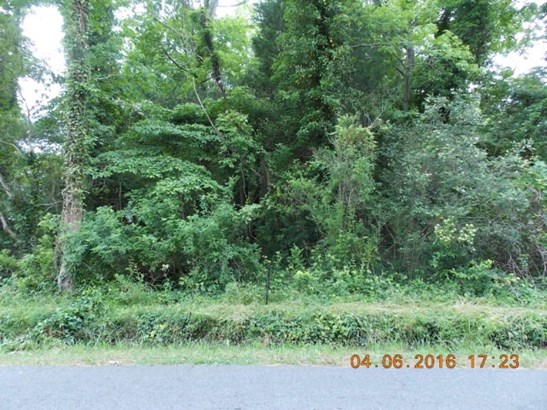 Land - Quinby, VA (photo 2)