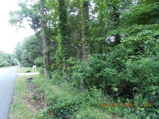 Land - Quinby, VA (photo 3)