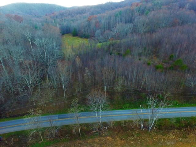 Land (Acreage), Lots/Land/Farm - Callaway, VA (photo 1)